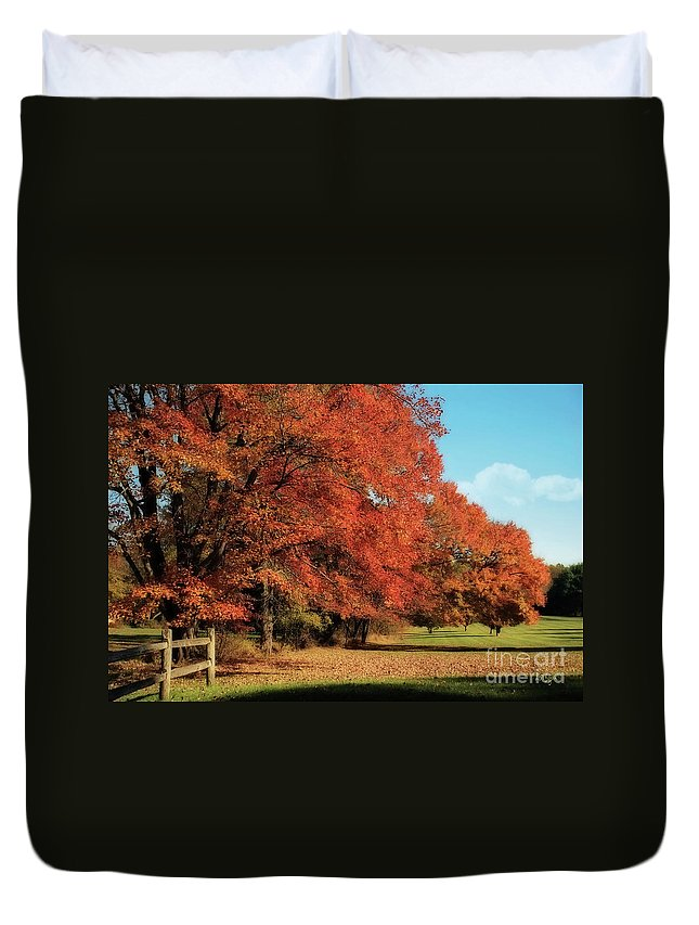 Autumn Duvet Cover featuring the photograph Flame Trees by Lois Bryan