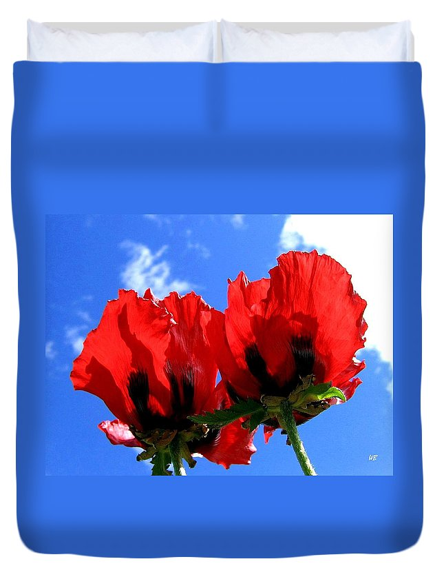 Blue Duvet Cover featuring the photograph Flaming Skies by Will Borden