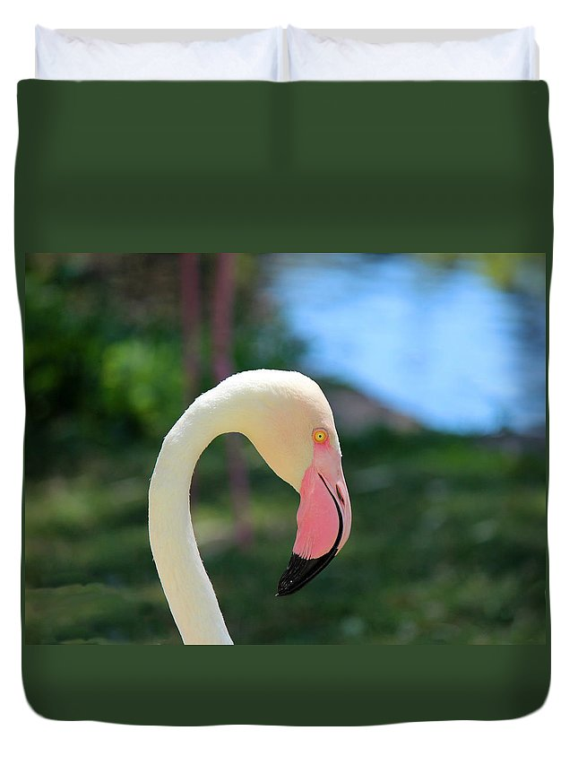 Flamingo Duvet Cover featuring the photograph Flamingo Closeup by Lorraine Baum