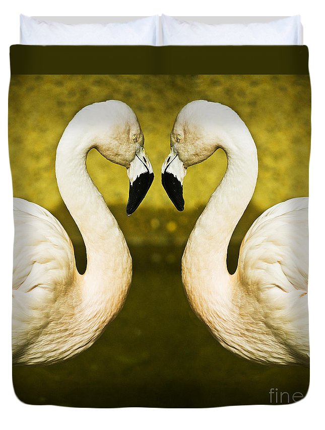 Flamingo Duvet Cover featuring the photograph Flamingo Reflection by Sheila Smart Fine Art Photography