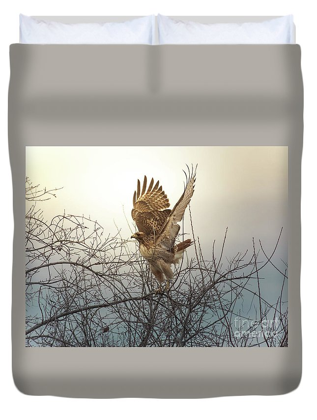 Animal Duvet Cover featuring the photograph Flashing The Truckers by Robert Frederick