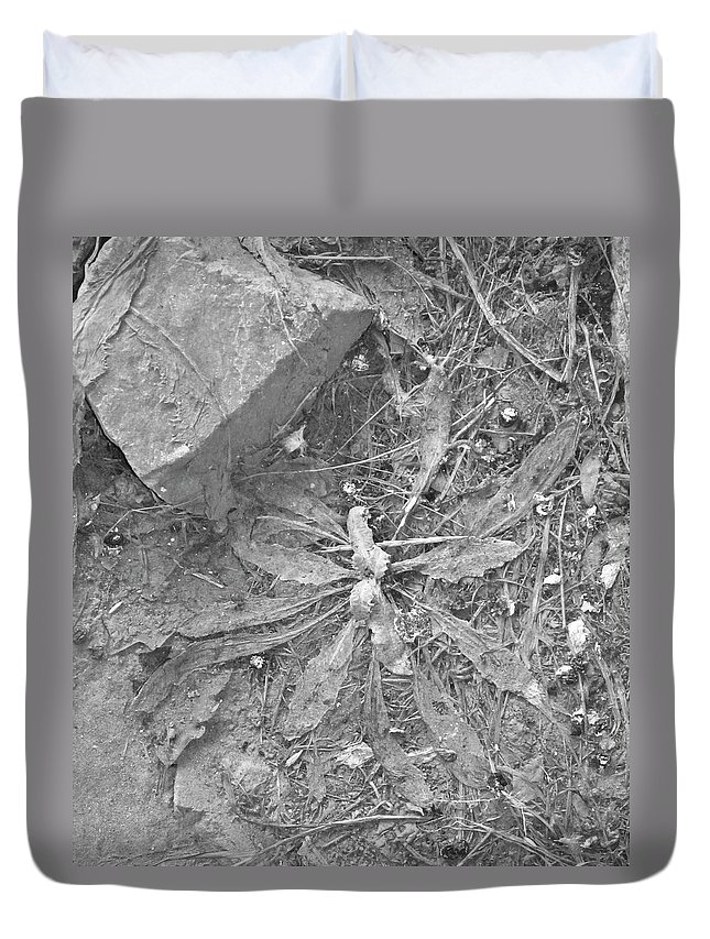Plant Duvet Cover featuring the photograph Flattened by Angus Hooper Iii