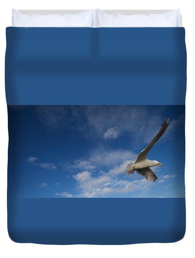 Seagull Bird Flying Beach Duvet Cover featuring the photograph Flier by Rick Takagi