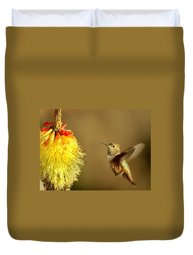 Hummingbird Duvet Cover featuring the photograph Flight Of The Hummer by Mike Dawson