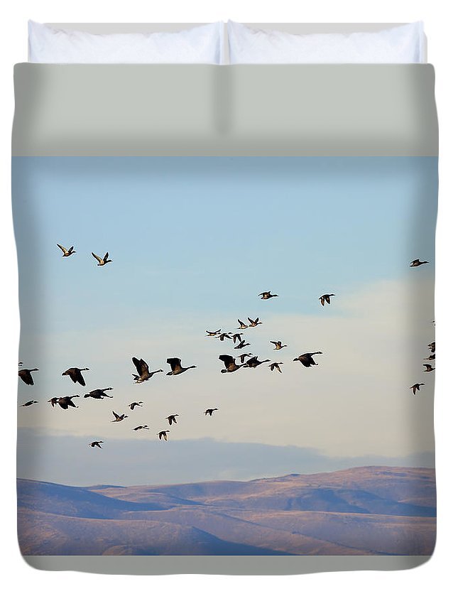 Waterfowl Duvet Cover featuring the photograph Flight Of The Waterfowl by Mike Dawson