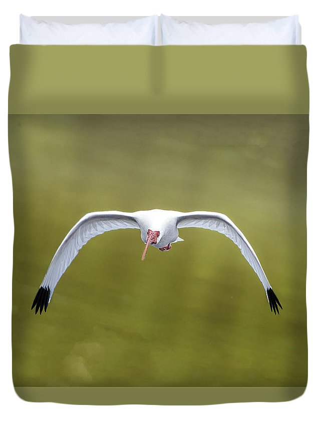 Bird Duvet Cover featuring the photograph Flight Of The White Ibis by William Bitman
