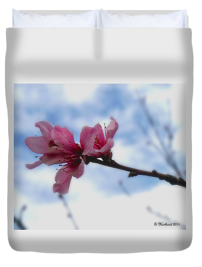 Peach Duvet Cover featuring the photograph Floating On Air by Betty Northcutt