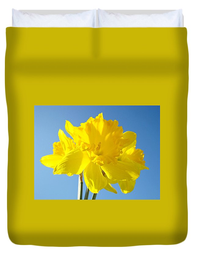 Spring Duvet Cover featuring the photograph Floral Art Bright Yellow Daffodil Flowers Baslee Troutman by Baslee Troutman