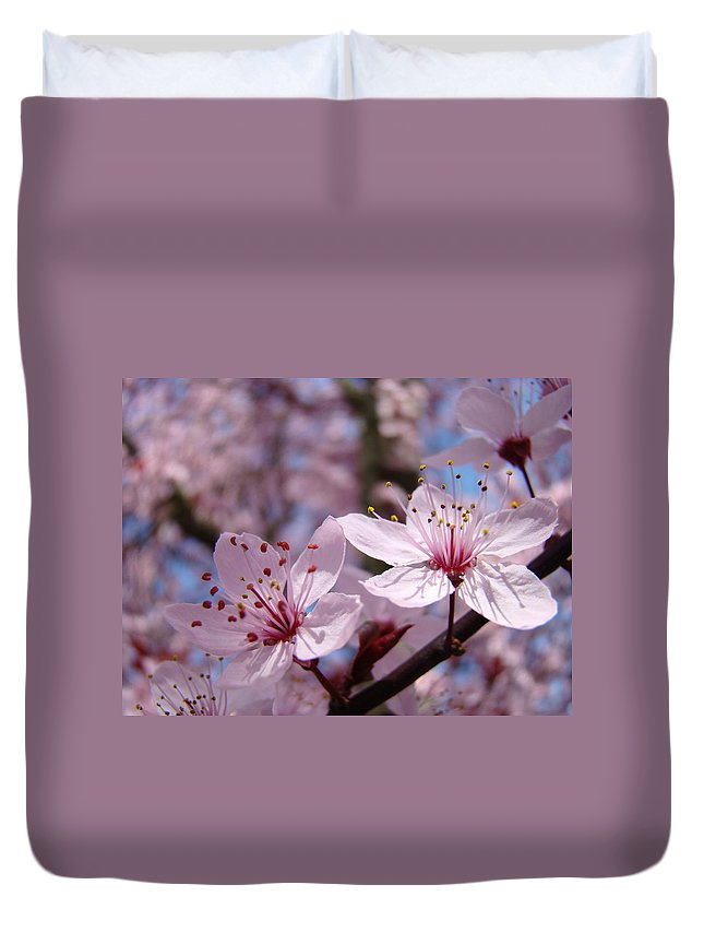 Blossom Duvet Cover featuring the photograph Floral Art Pink Spring Blossoms Prints Blue Sky Baslee Troutman by Baslee Troutman