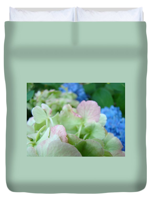 Hydrangea Duvet Cover featuring the photograph Floral Artwork Hydrangea Flowers Soft Nature Giclee Baslee Troutman by Baslee Troutman