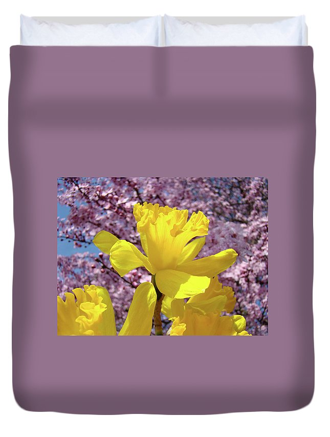 Nature Duvet Cover featuring the photograph Floral Fine Art Daffodils Art Prints Spring Flowers Sunlit Baslee Troutman by Baslee Troutman