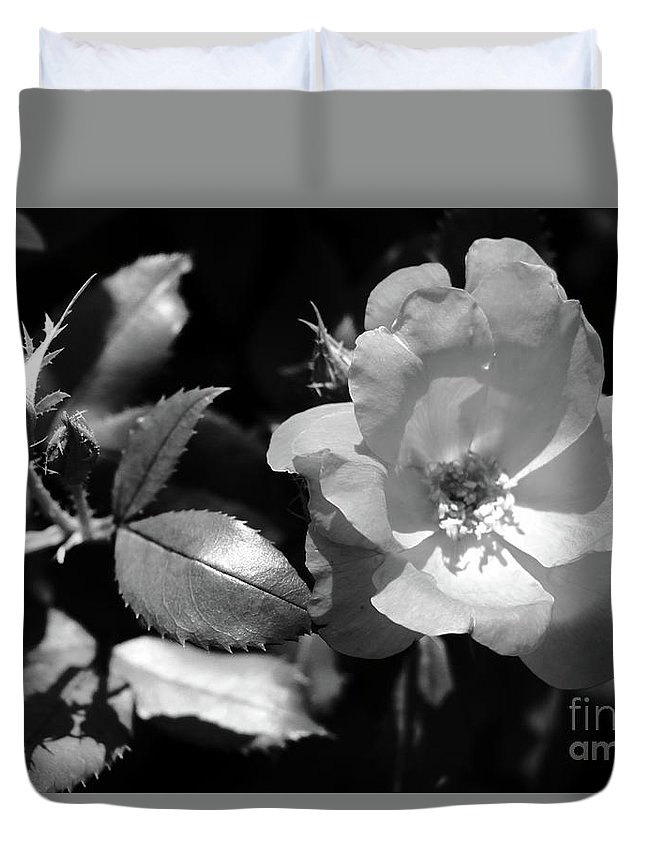 Flower Duvet Cover featuring the photograph Floral Spotlight by Amanda Martin