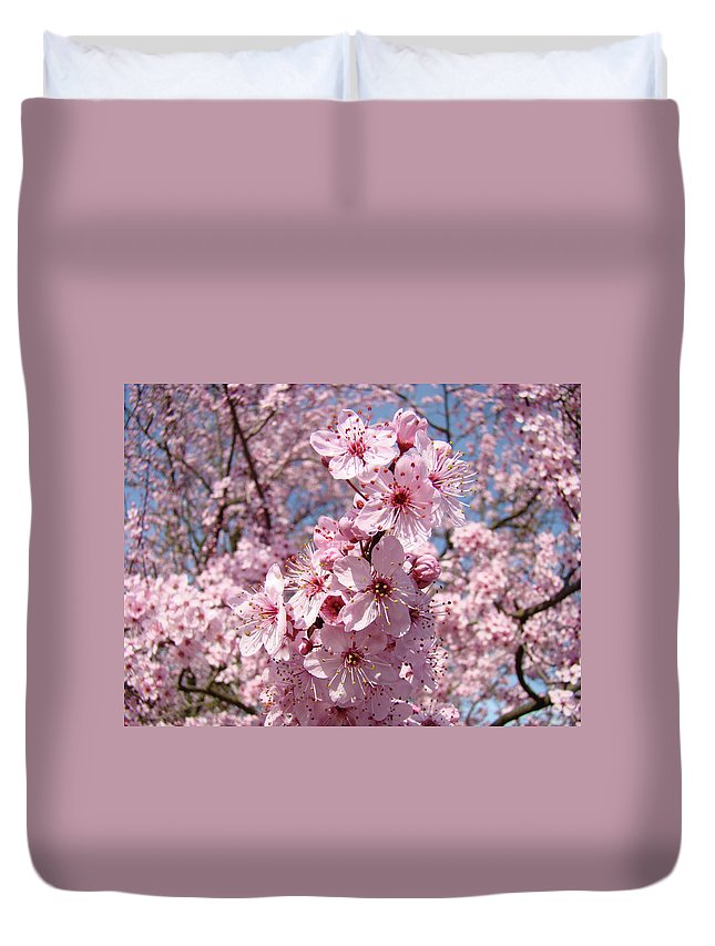 Blossom Duvet Cover featuring the photograph Floral Spring Art Pink Blossoms Canvas Baslee Troutman by Baslee Troutman
