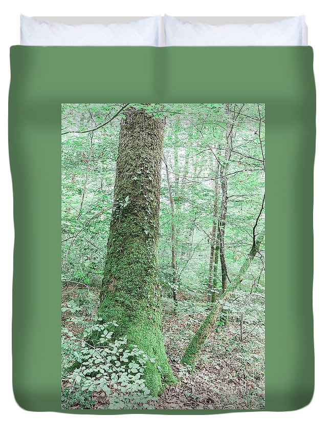 Forest Duvet Cover featuring the photograph Forest by Luis Ganilho