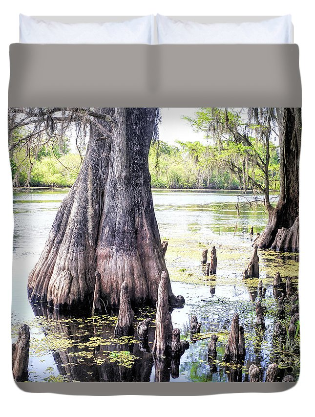 Photographs Duvet Cover featuring the photograph Florida Cypress, Hillsborough River, Fl by Felix Lai
