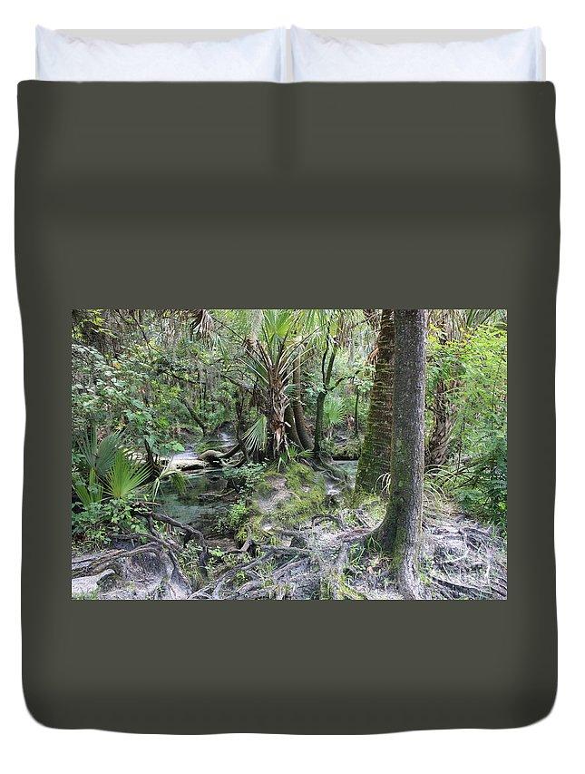 Florida Landscape Duvet Cover featuring the photograph Florida Landscape - Lithia Springs by Carol Groenen