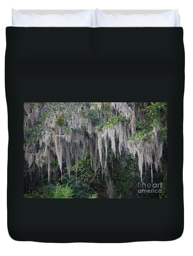 Spanish Moss Duvet Cover featuring the photograph Florida Mossy Tree by Carol Groenen