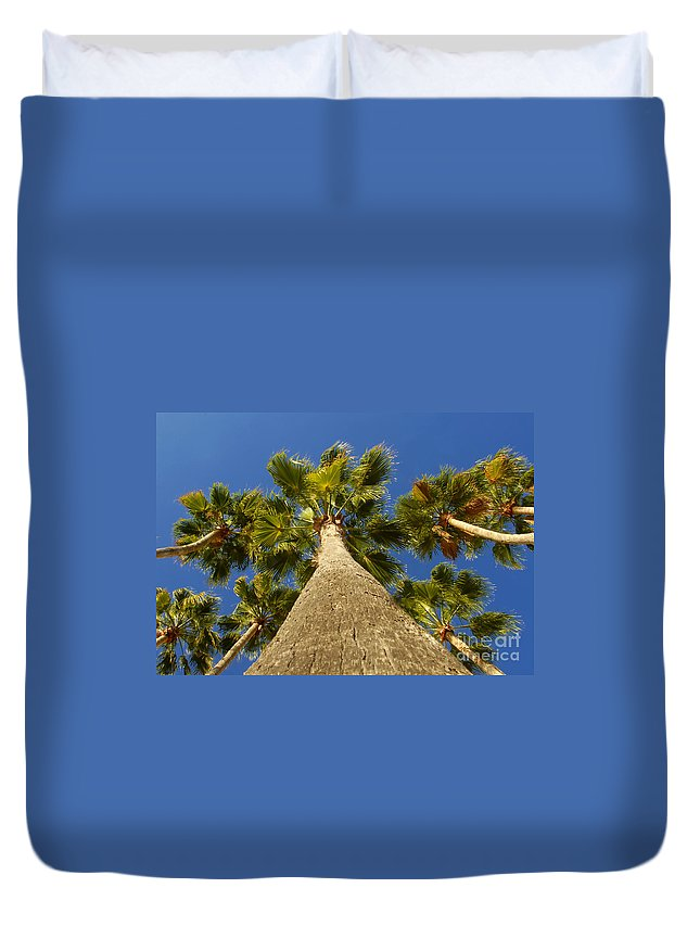 Florida. Palm Trees. Tropical Duvet Cover featuring the photograph Florida Palms by David Lee Thompson