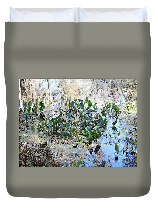 Florida Pond Duvet Cover featuring the photograph Florida Pond by Carol Groenen