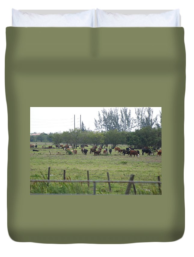 Trees Duvet Cover featuring the photograph Florida Ranch by Rob Hans