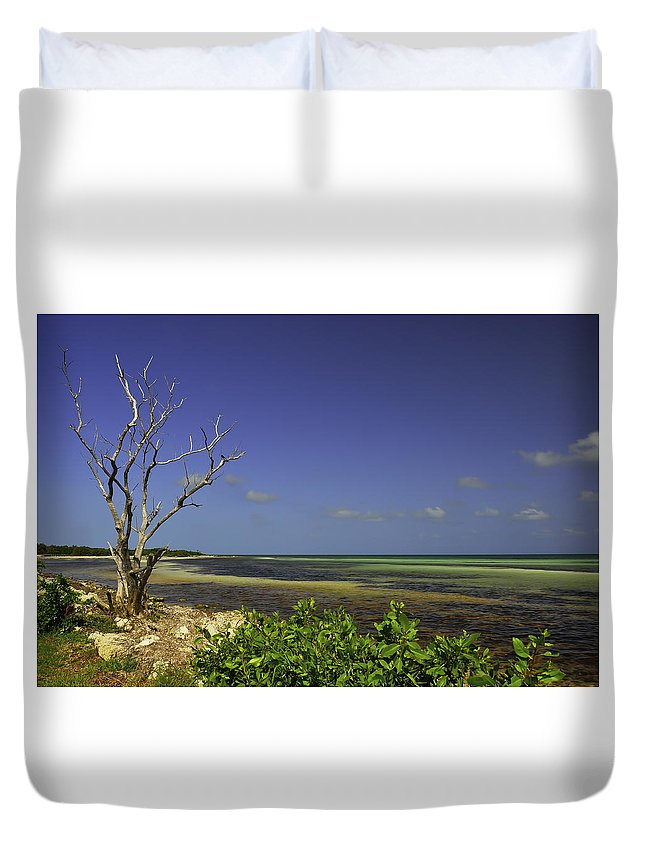 #nature Duvet Cover featuring the photograph Florida Tree by Mary Koutzarov
