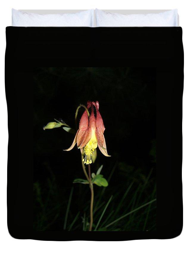 Flower Duvet Cover featuring the photograph Flower by Amanda Kabat