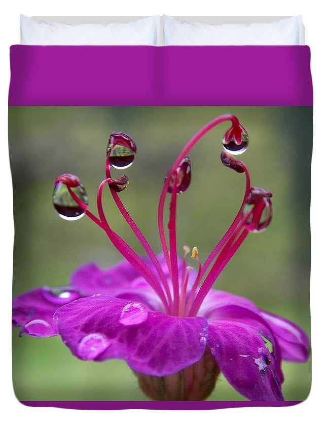 Flower Duvet Cover featuring the photograph Flower And Raindrops by Olja Simovic