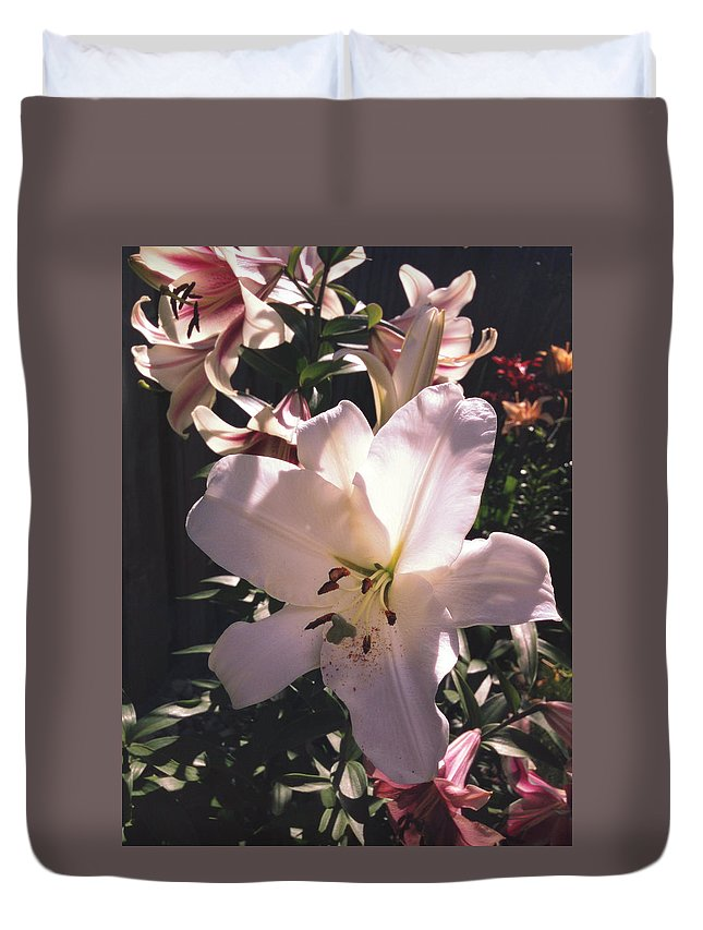 Nature Duvet Cover featuring the photograph Flower by Andreea Balan