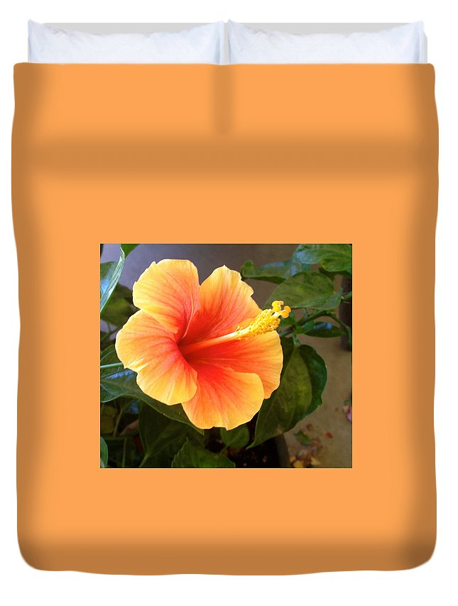 Flower Duvet Cover featuring the photograph Flower by Bethany Morrow
