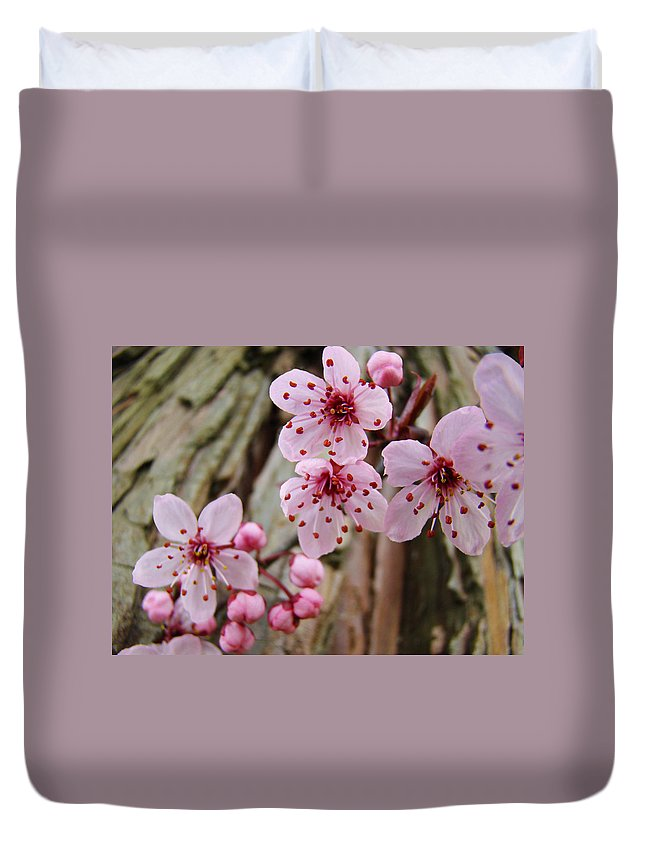 Tree Duvet Cover featuring the photograph Flower Blossoms Pink Tree Blossoms Art Print Giclee Spring Flowers by Baslee Troutman