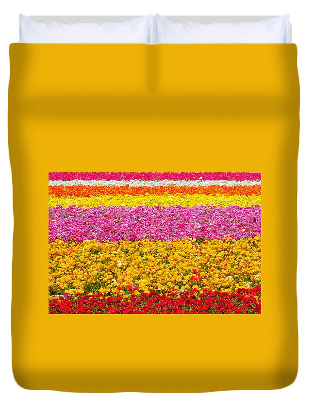 Flower Duvet Cover featuring the photograph Flower Fields Carlsbad Ca Giant Ranunculus by Christine Till