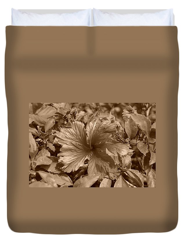 Sepia Duvet Cover featuring the photograph Flower In Sepia by Rob Hans
