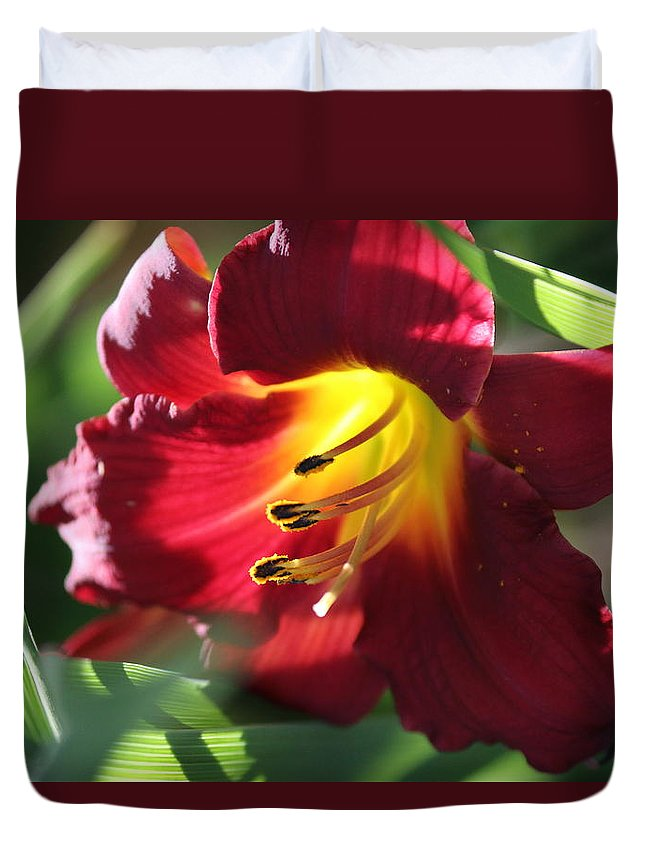 Nature Duvet Cover featuring the photograph Flower by Lisa Spero