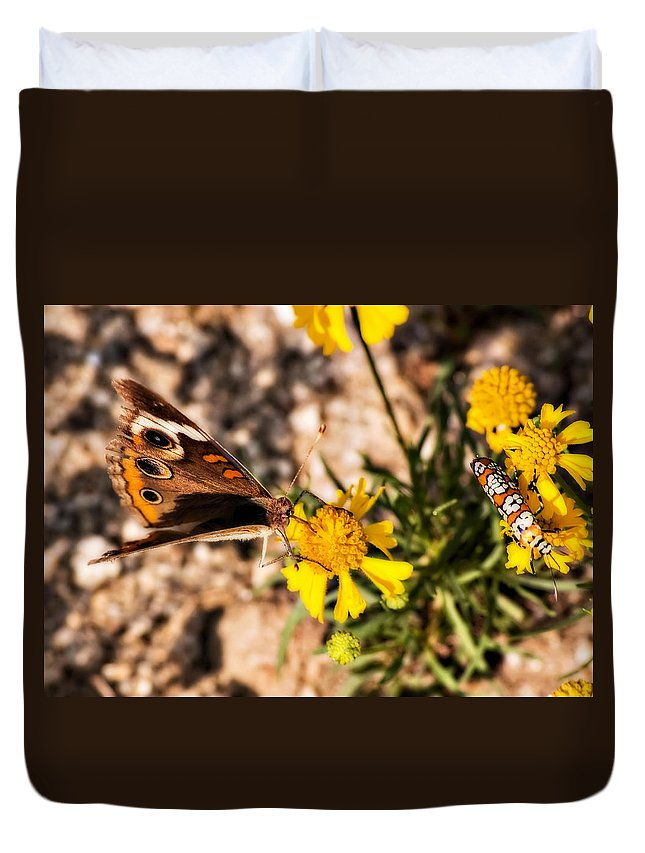 Butterfly Duvet Cover featuring the photograph Flower Power Bug And Butterfly by Gary Adkins