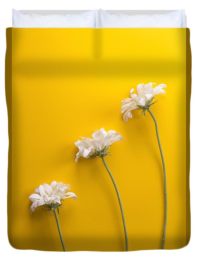 Petal Duvet Cover featuring the photograph flower, white, three, online, Yellow Background, lateral, vertic by Jose Luis Agudo