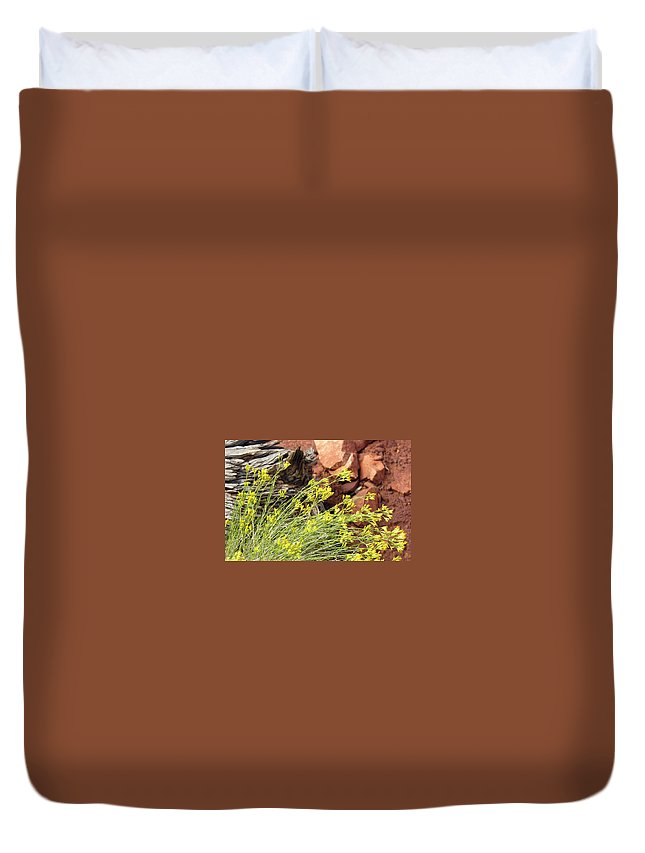 Flower Duvet Cover featuring the photograph Flower Wood And Rock by Marilyn Hunt