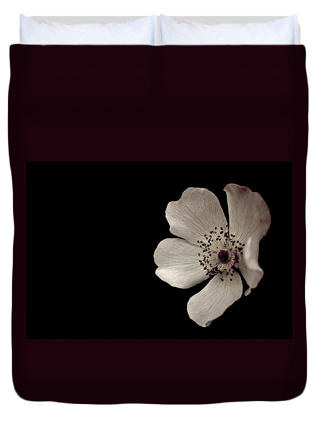 Flower Duvet Cover featuring the photograph Flower1 by Danielle Silveira