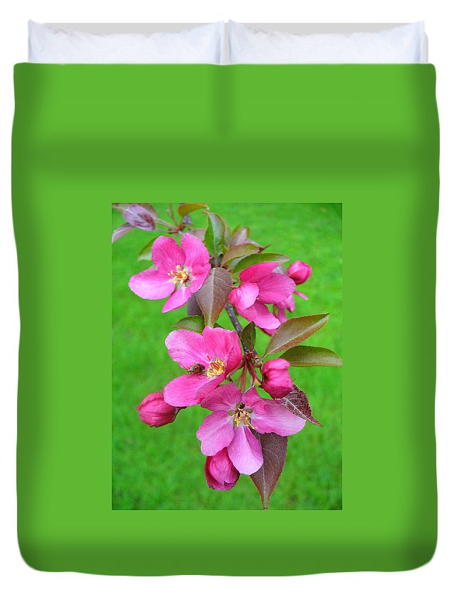 Flowering Trees Duvet Cover featuring the photograph Flowering Crab by Peggy King