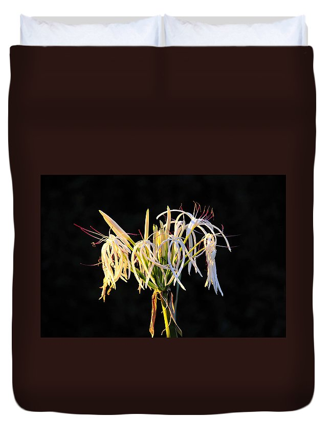 Flower Duvet Cover featuring the photograph Flowering In Florida by David Lee Thompson