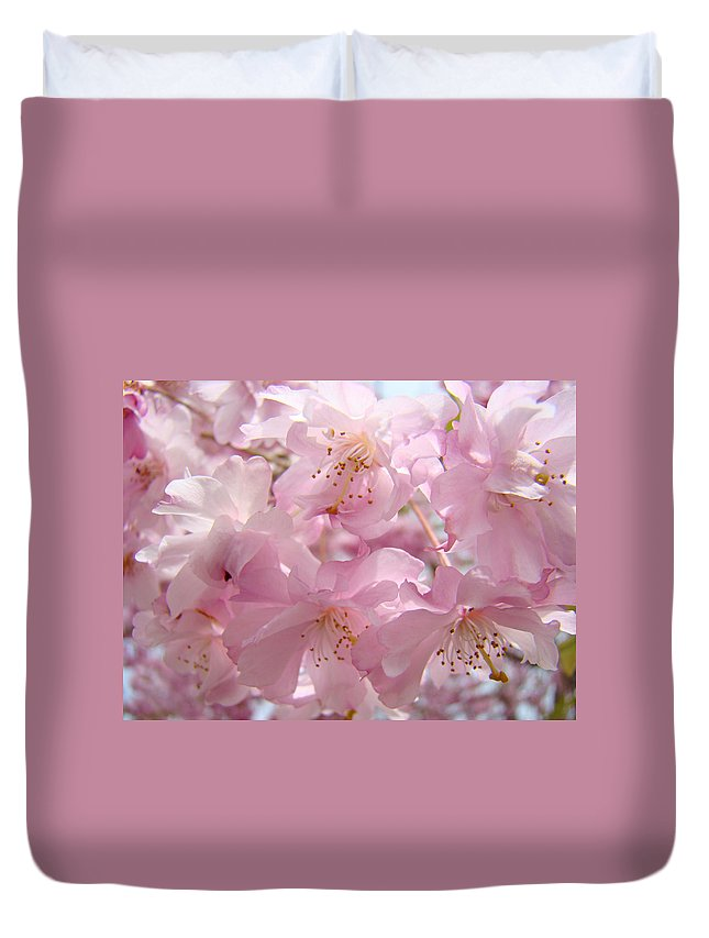 Blossom Duvet Cover featuring the photograph Flowering Tree Art Prints Spring Pink Blossom Flowers Baslee by Baslee Troutman