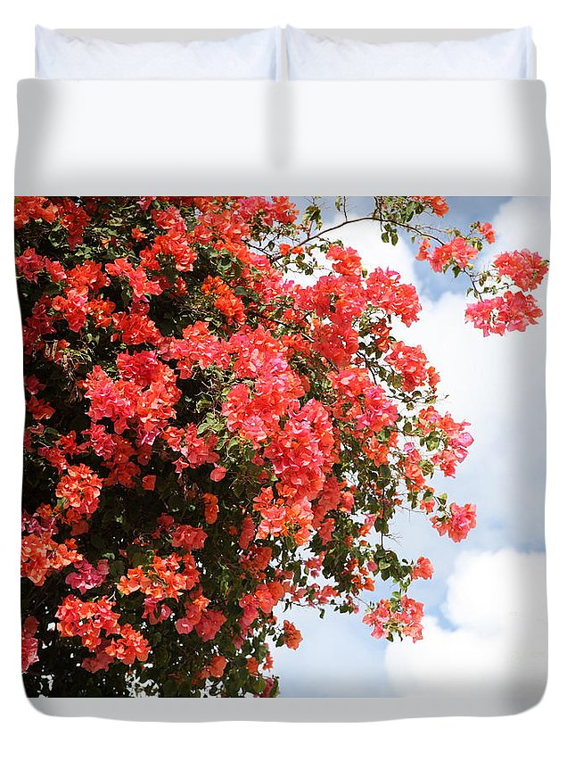 Hawaii Duvet Cover featuring the photograph Flowering Tree by Nadine Rippelmeyer