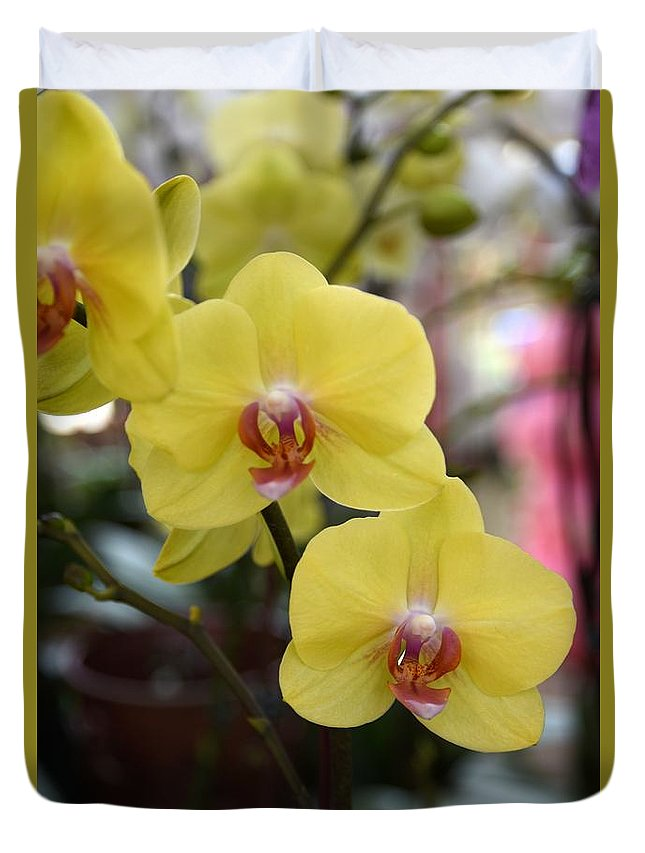 Orchids Photos Duvet Cover featuring the photograph Flowers 821 by Joyce StJames