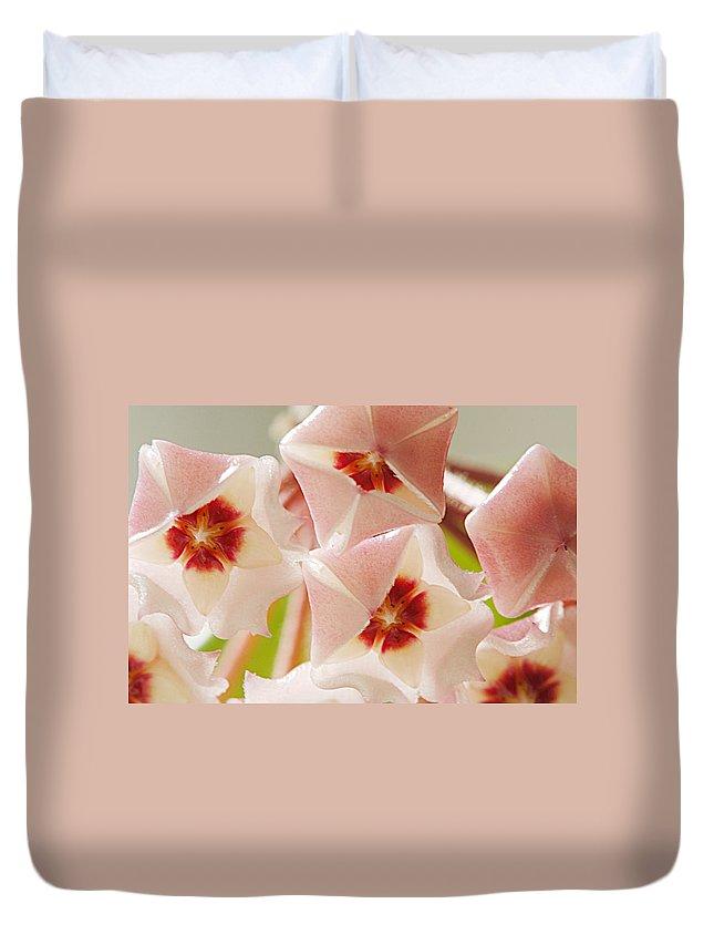 Flowers Duvet Cover featuring the photograph Flowers-hoya 1 by Jill Reger