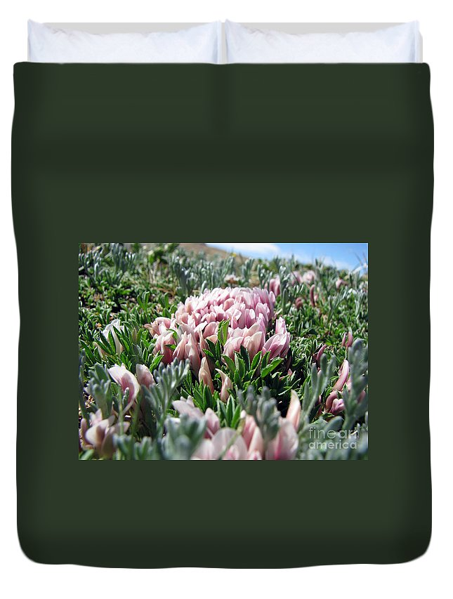 Flowers Duvet Cover featuring the photograph Flowers In The Alpine Tundra by Amanda Barcon