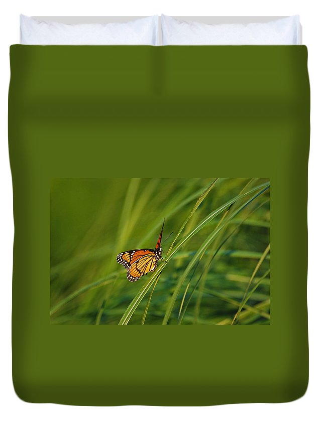 Monarch Duvet Cover featuring the photograph Fluttering Through The Summer Grass by Lori Tambakis