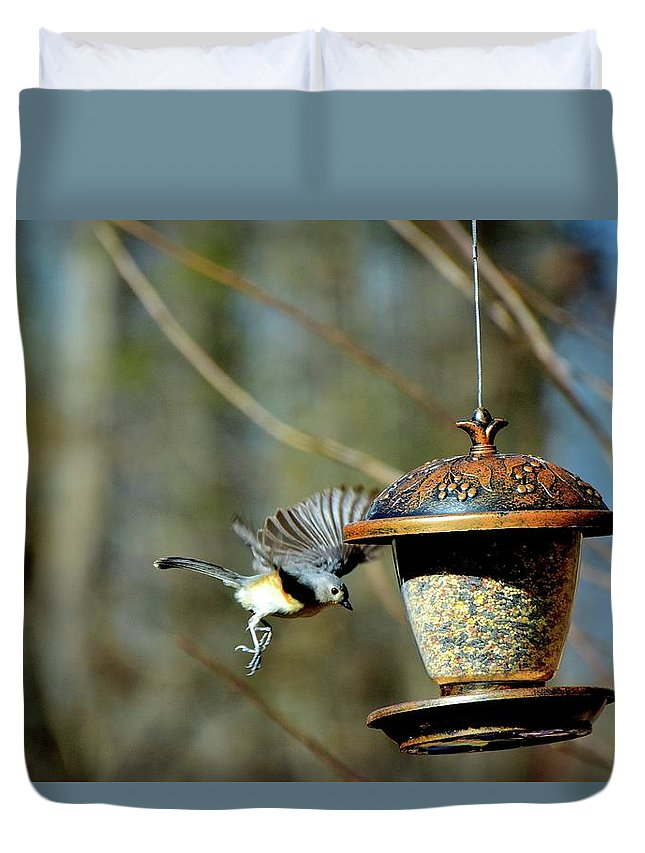 Bird Duvet Cover featuring the photograph Fly Birds 324 by Lawrence Hess
