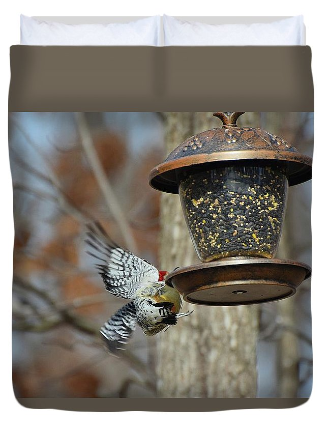 Bird Duvet Cover featuring the photograph Fly Birds 326 by Lawrence Hess
