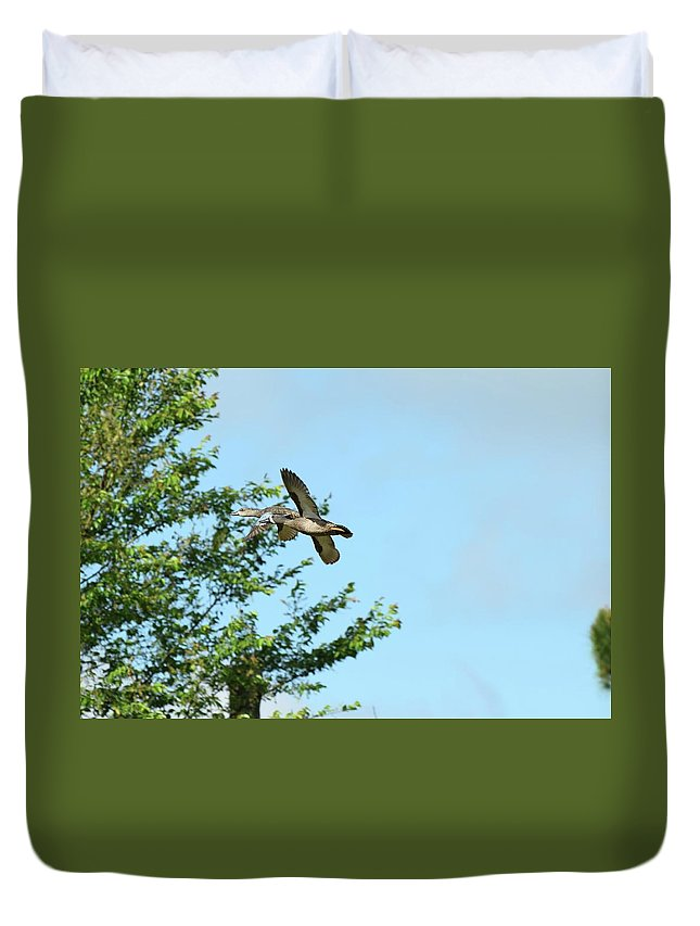 Bird Duvet Cover featuring the photograph Fly Birds 329 by Lawrence Hess