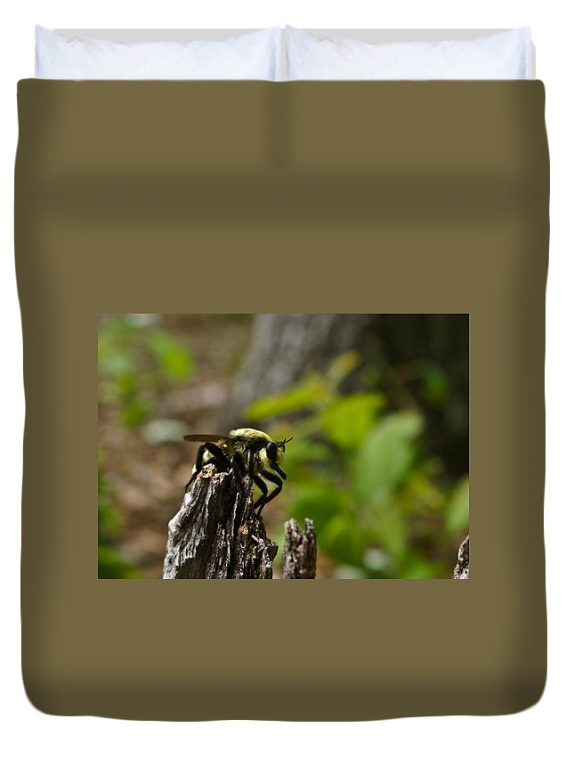 Fly Duvet Cover featuring the photograph Fly On Mountain by Douglas Barnett