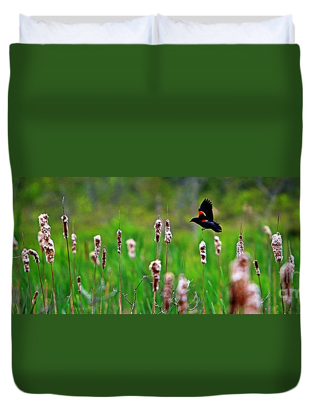Sun Duvet Cover featuring the photograph Flying Amongst Cattails by James F Towne